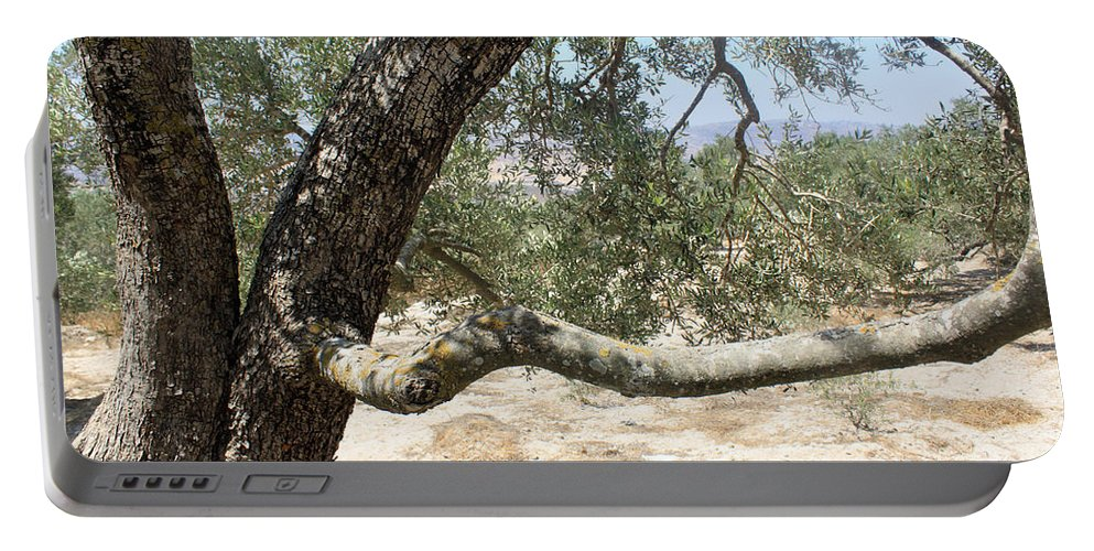 Closeup Portable Battery Charger featuring the photograph Close Up Olive Tree by Munir Alawi