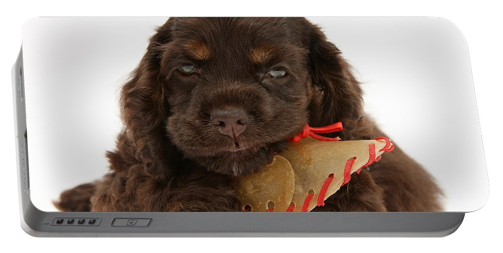 Dog Portable Battery Charger featuring the photograph Cocker Spaniel Pup With Chew Treat by Mark Taylor