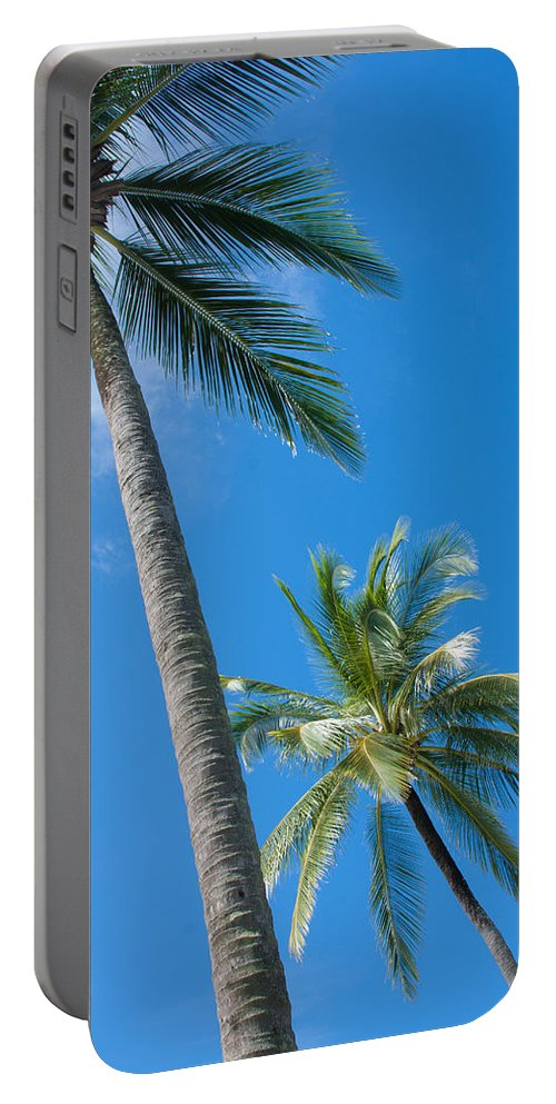 Background Portable Battery Charger featuring the photograph Coconuts by Atiketta Sangasaeng
