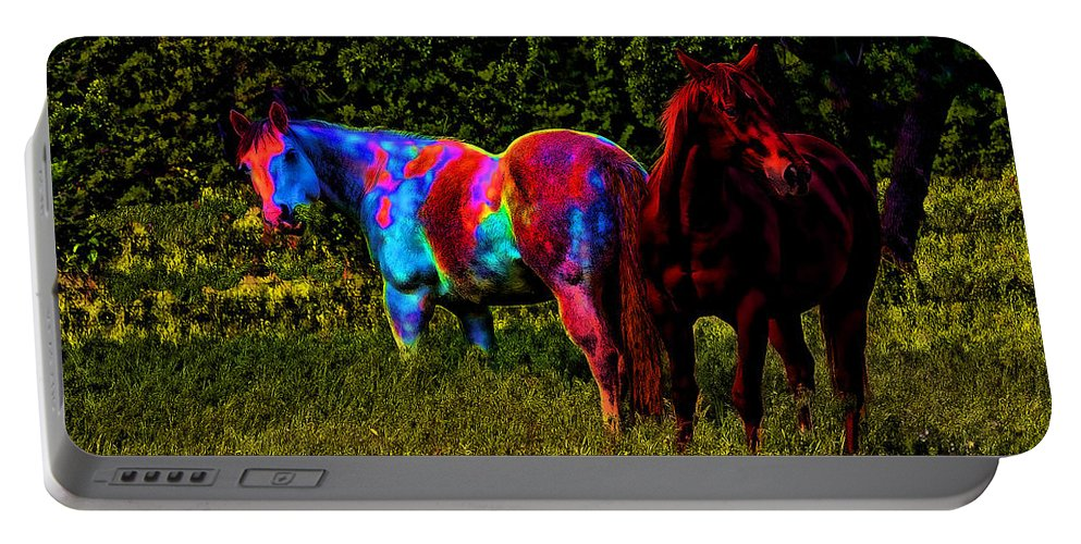 Horse Portable Battery Charger featuring the photograph Color Blind by Ericamaxine Price