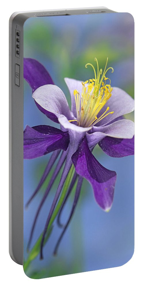 00176669 Portable Battery Charger featuring the photograph Colorado Blue Columbine Close by Tim Fitzharris