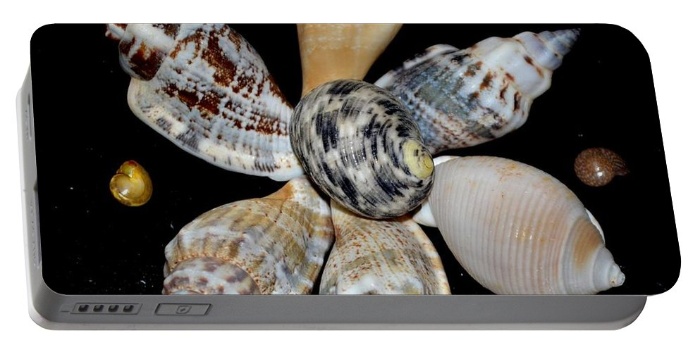 Colored Portable Battery Charger featuring the photograph Colored Seashells by Maria Urso