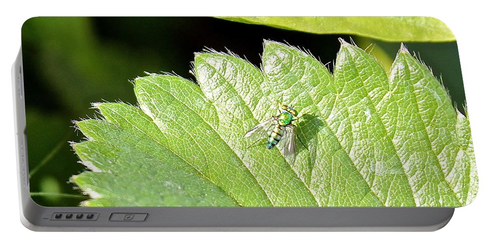 Colorful Portable Battery Charger featuring the photograph Colorful Garden Fly 2 by Kume Bryant