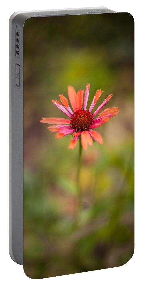 Flower Portable Battery Charger featuring the photograph Colorful Stand by Mike Reid