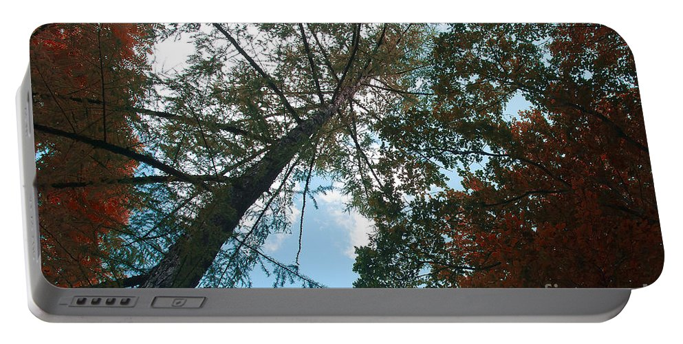 Fall Colors Portable Battery Charger featuring the photograph Colors Of Fall by Ivy Ho
