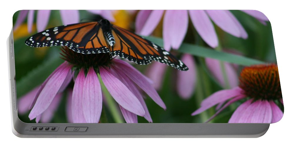 Nature Portable Battery Charger featuring the photograph Cone Flowers And Monarch Butterfly by Kay Novy
