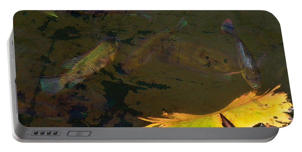 Fish Portable Battery Charger featuring the photograph Conferring With The Yellow by Naoki Takyo