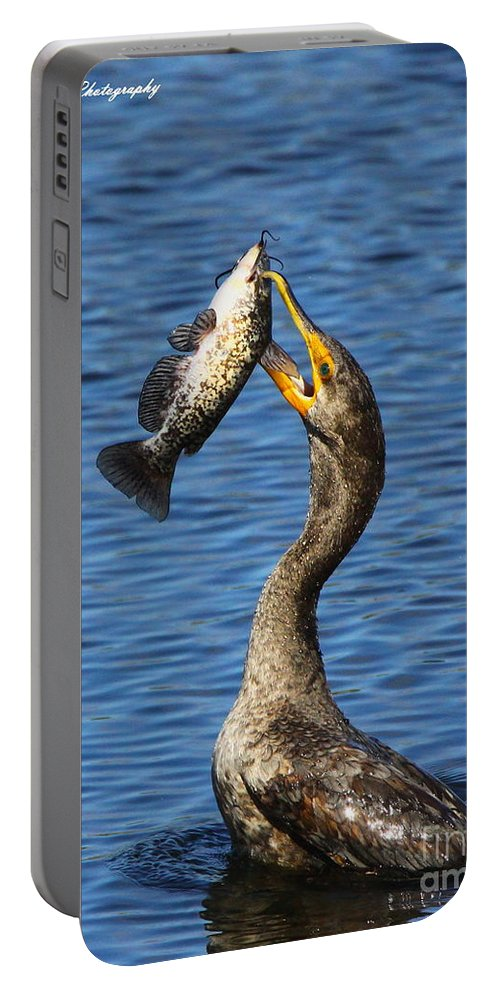 Double Crested Cormorant Portable Battery Charger featuring the photograph Cormorant Catches Catfish by Barbara Bowen