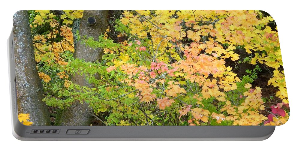Autumn Portable Battery Charger featuring the photograph Country Color 23 by Will Borden