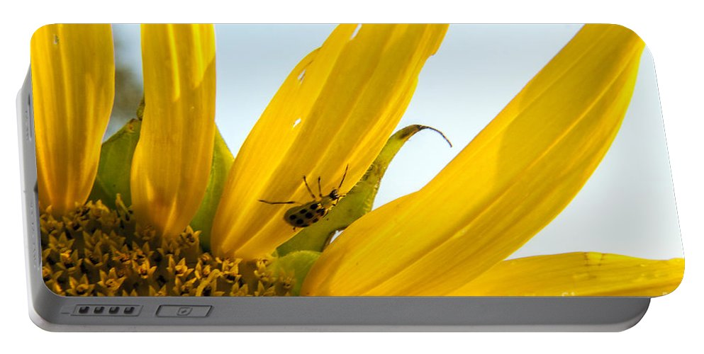 Sunflower Portable Battery Charger featuring the photograph Crawling Along The Sunflower by Darleen Stry
