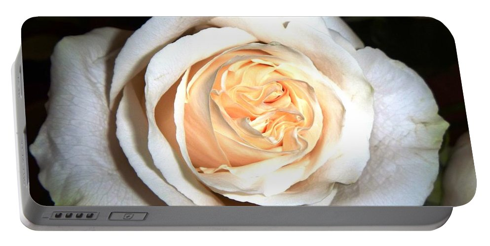Single Rose Portable Battery Charger featuring the photograph Creamy Rose I by Alys Caviness-Gober