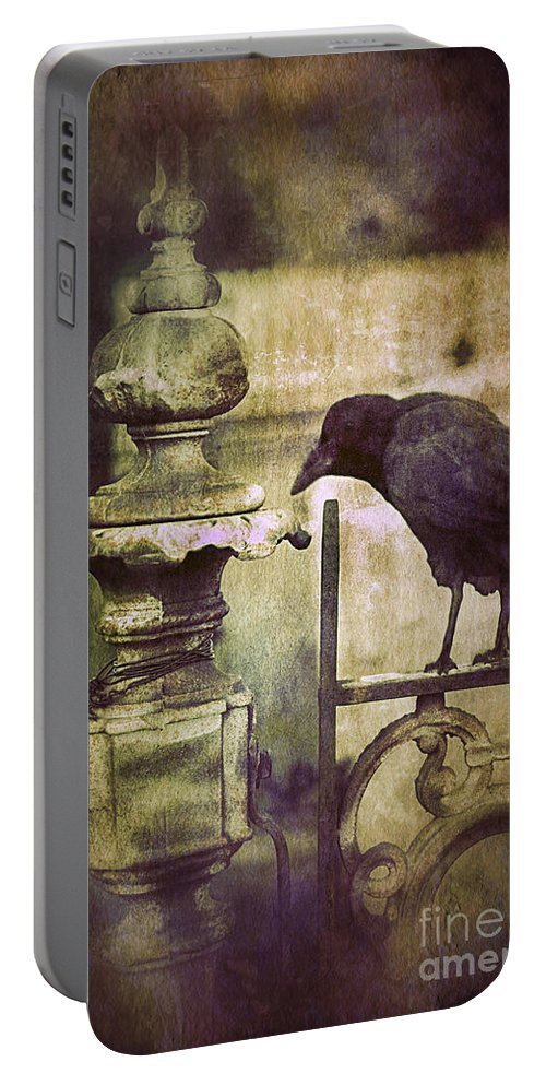 Iron Portable Battery Charger featuring the photograph Crow On Iron Gate by Jill Battaglia