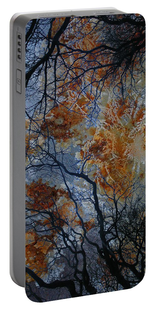 Branches Portable Battery Charger featuring the photograph Crusted Criticism by The Artist Project