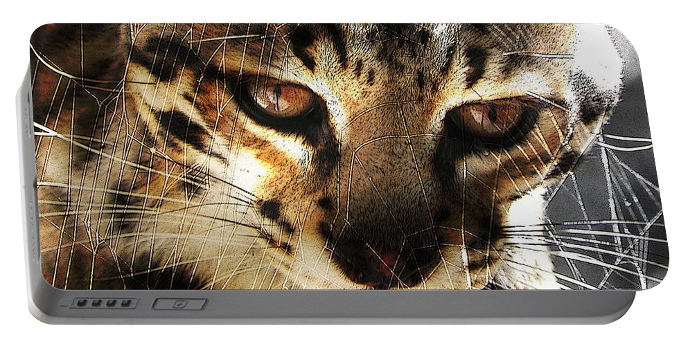 Cat Portable Battery Charger featuring the photograph Curious by Jesus Nicolas Castanon