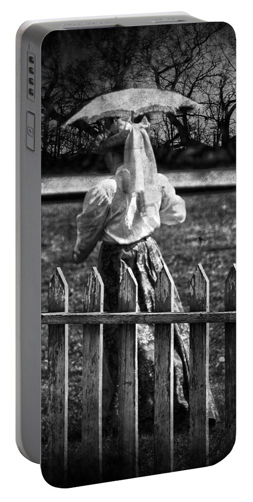 Lady Portable Battery Charger featuring the photograph Curious Catey by The Artist Project