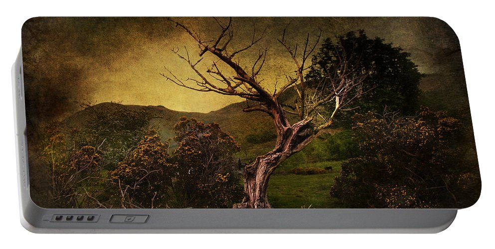 Country Portable Battery Charger featuring the digital art Dead Tree by Svetlana Sewell