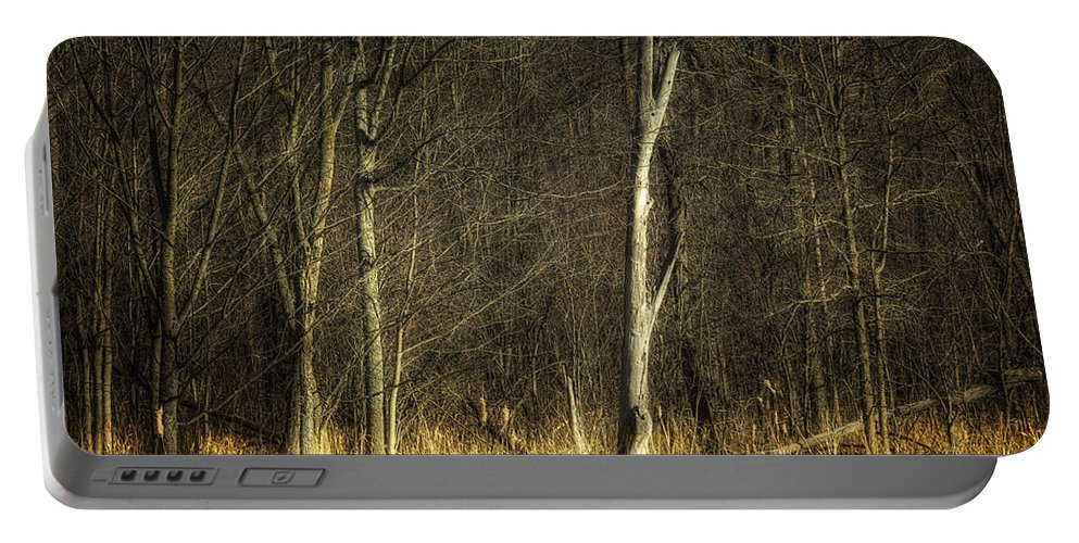Acrylic Prints Portable Battery Charger featuring the photograph Deadwood Napanee by John Herzog