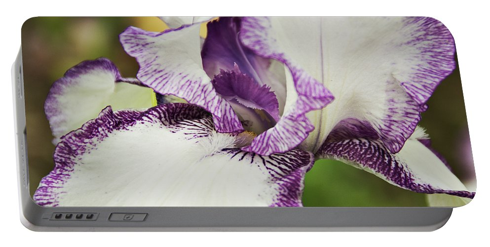Iris Portable Battery Charger featuring the photograph Delicate Ruffles 2 by Angelina Vick