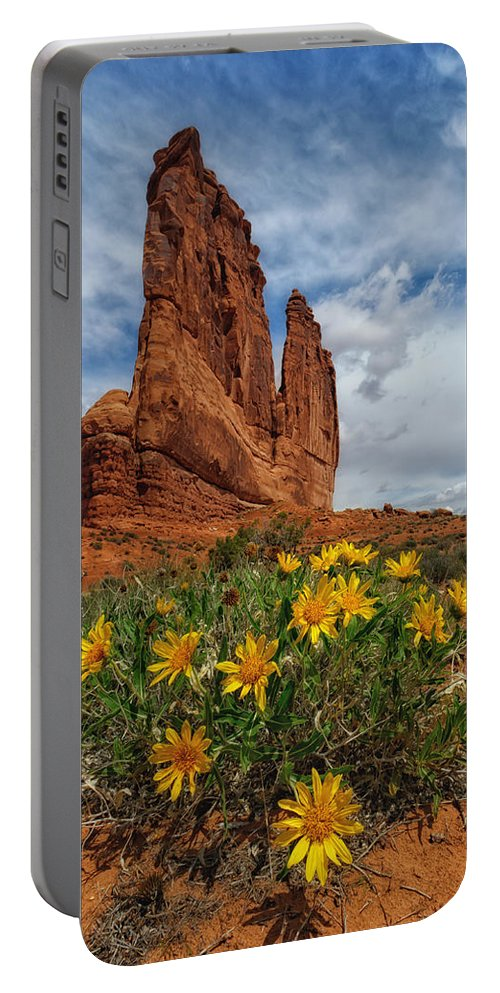Landscape Portable Battery Charger featuring the photograph Desert Flowers by Charlie Choc