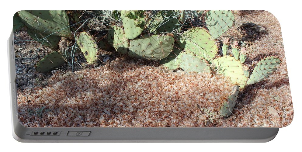 Desert Portable Battery Charger featuring the photograph Desert's Collection Of Dried Flowers1 by Kume Bryant