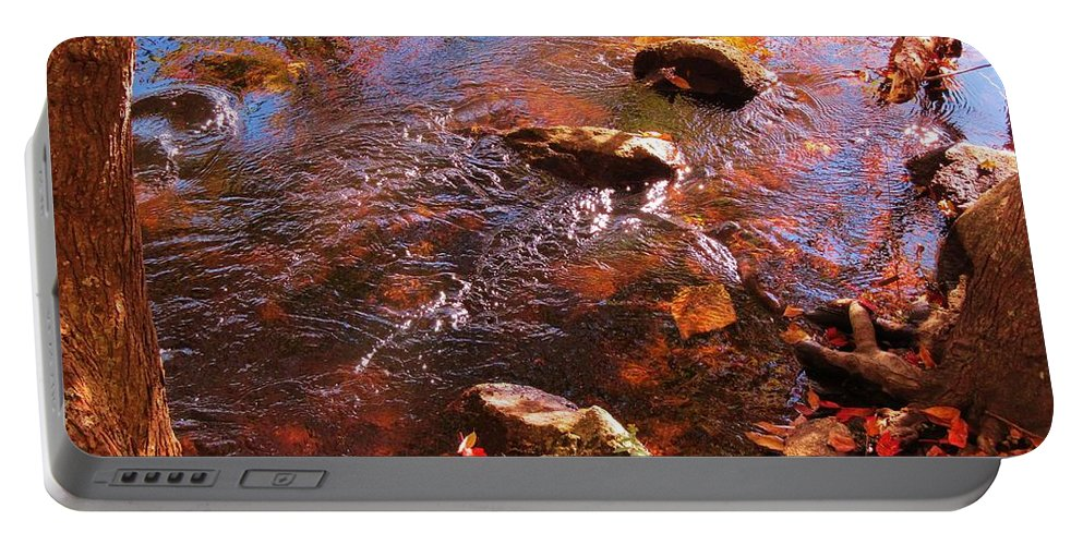 Stream Portable Battery Charger featuring the photograph Details In Nature by John Malone