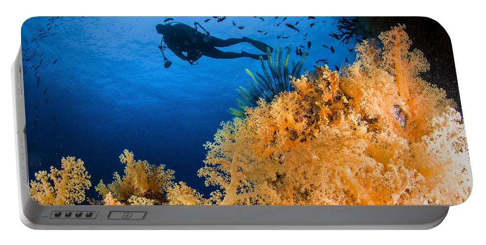 Crinoid Portable Battery Charger featuring the photograph Diver Swimms Above Soft Coral, Fiji by Todd Winner