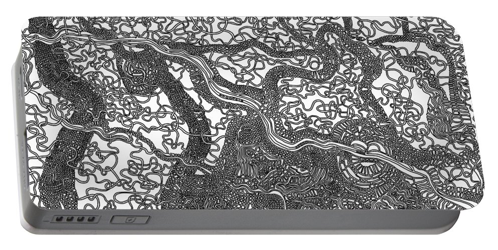 Optical Obsession Portable Battery Charger featuring the painting Diverse by Douglas Christian Larsen