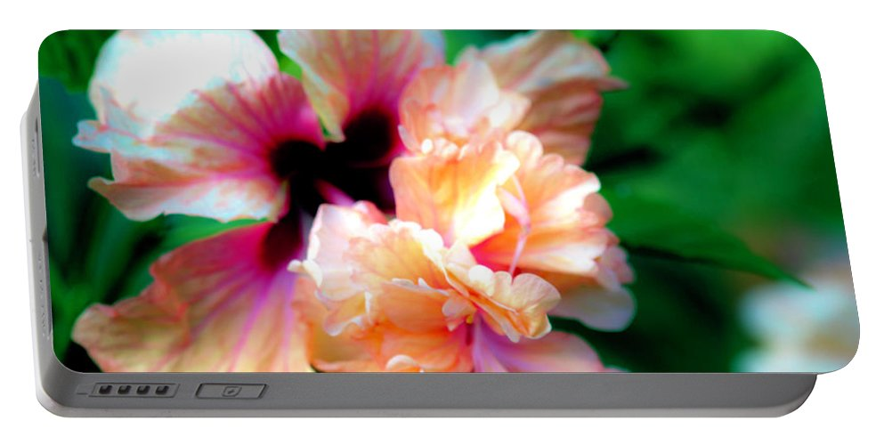Hibiscus Portable Battery Charger featuring the photograph Double Peach Hibiscus Five by Ken Frischkorn