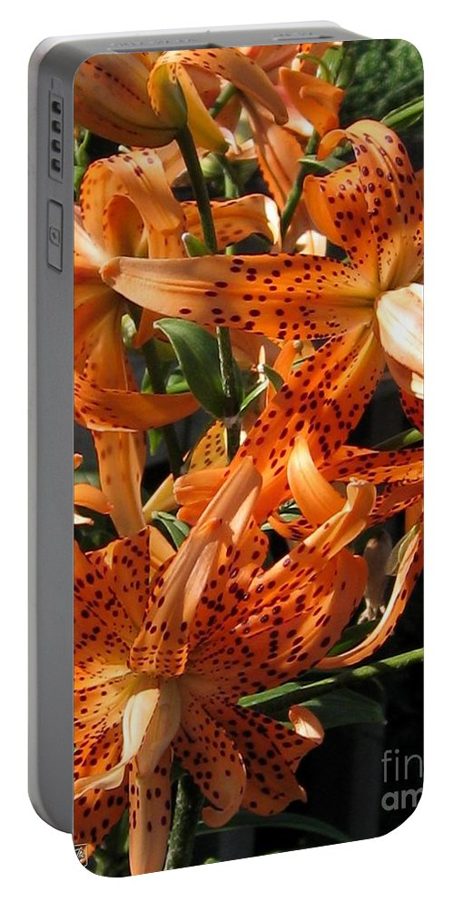 Double Portable Battery Charger featuring the photograph Double Tiger Lily Named Flora Pleno by J McCombie