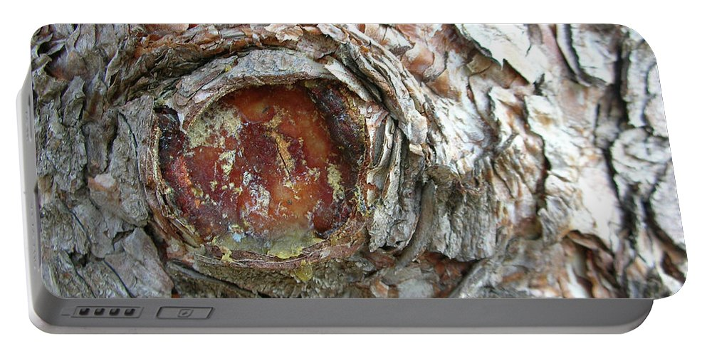 Tree Portable Battery Charger featuring the photograph Dragon Eye by Guy Whiteley