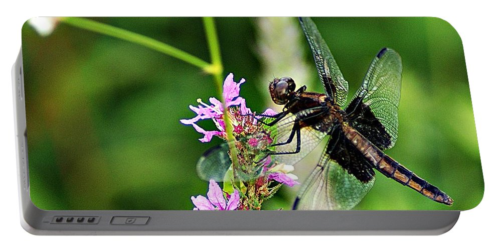 Dragonfly Portable Battery Charger featuring the photograph Dragonfly 2 by Joe Faherty