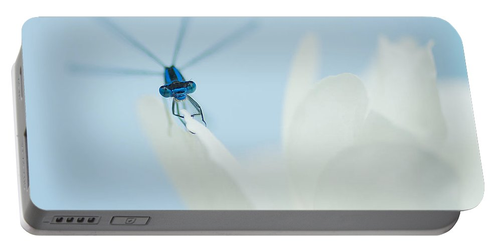Dragonfly Portable Battery Charger featuring the photograph Dragonfly by Beth Riser