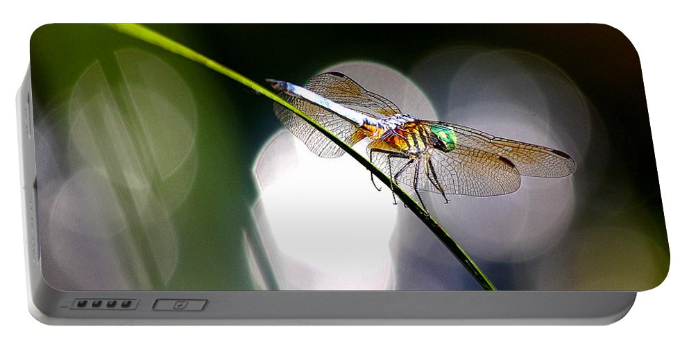 Dragonfly Portable Battery Charger featuring the photograph Dragonfly Dance by David E C Allingham
