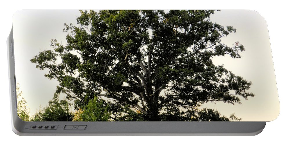Landscape Portable Battery Charger featuring the photograph Dream Tree by Jennifer Stockman