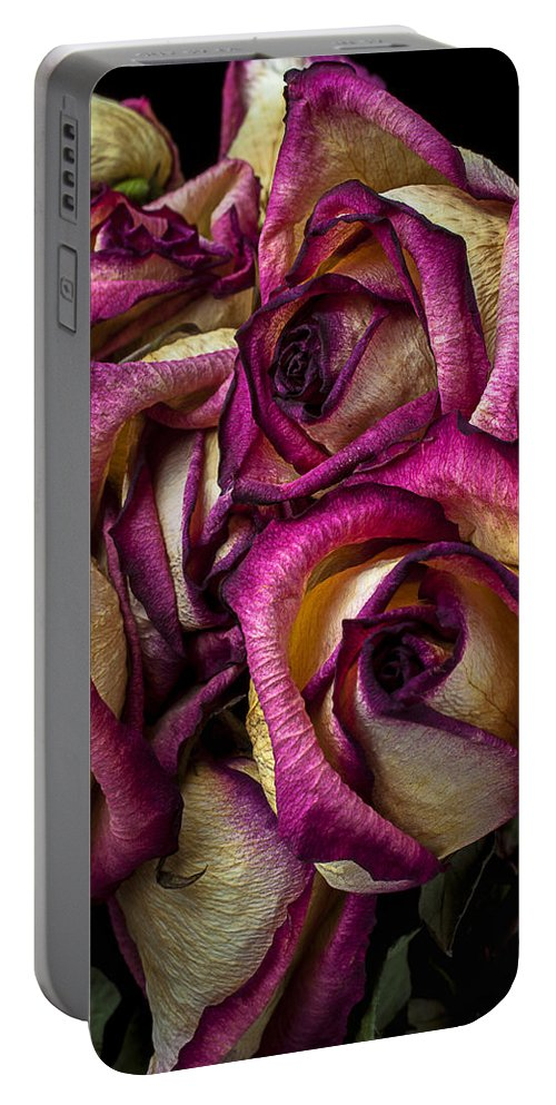 Dried Pink Portable Battery Charger featuring the photograph Dried Pink And White Roses by Garry Gay