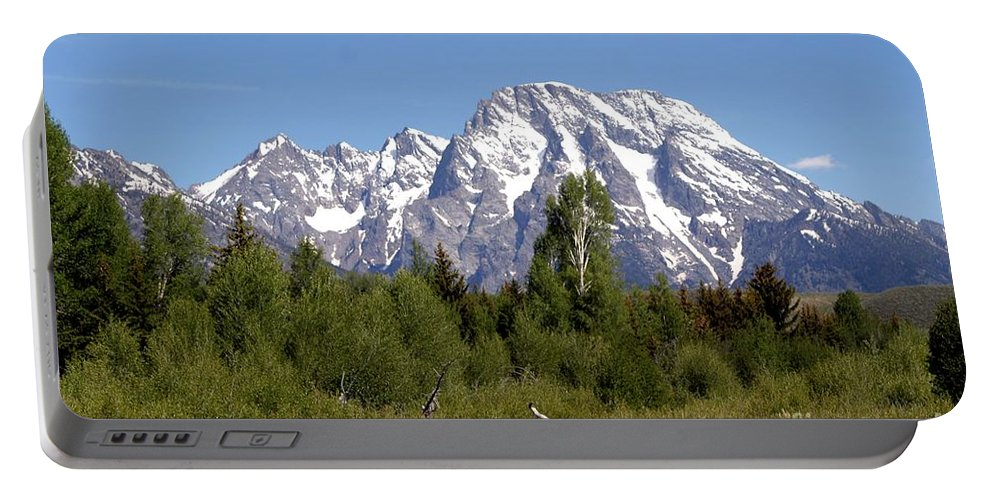 Grand Tetons Portable Battery Charger featuring the photograph Driftwood And The Grand Tetons by Living Color Photography Lorraine Lynch