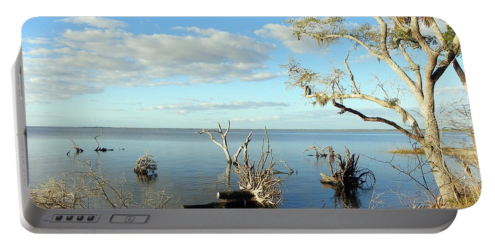 Driftwood Portable Battery Charger featuring the photograph Driftwood Landscape 1 by Sheri McLeroy