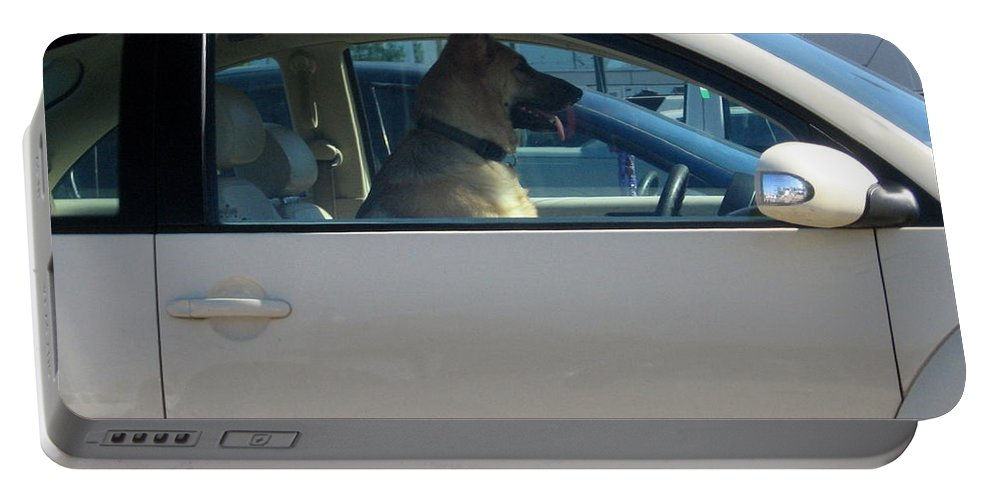 Portable Battery Charger featuring the photograph Driving Dog by Amy Hosp