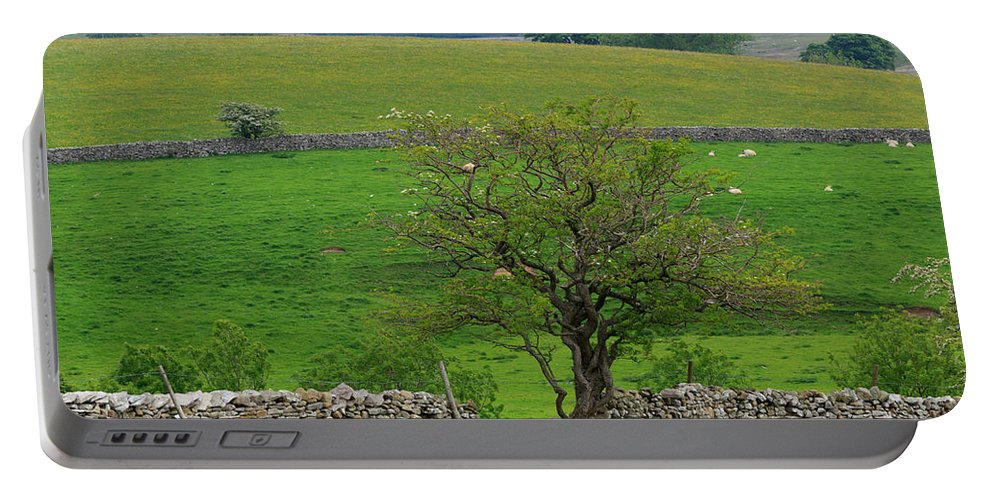 Tree Portable Battery Charger featuring the photograph Dry Stone Wall And Twisted Tree by Louise Heusinkveld