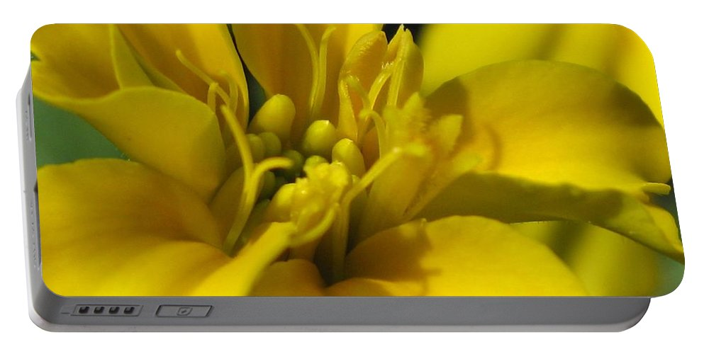 Dwarf Portable Battery Charger featuring the photograph Dwarf French Marigold In Disco Yellow by J McCombie