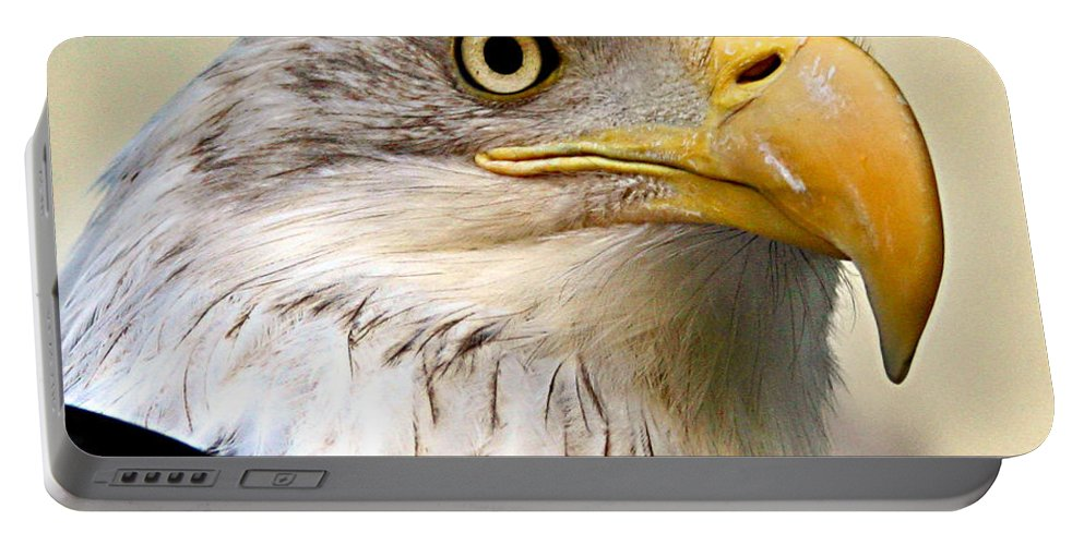 Animals Portable Battery Charger featuring the photograph Eagle Portrait by Jean Noren