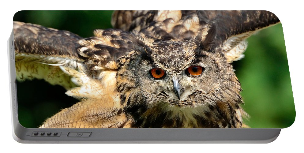 Bubo Bubo Portable Battery Charger featuring the photograph Eagle Owl by Joshua McCullough