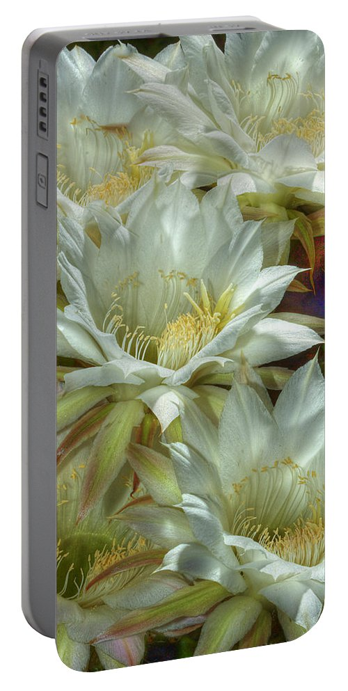 Flower Portable Battery Charger featuring the photograph Easter Lily Cactus Bouquet Hdr by Phyllis Denton