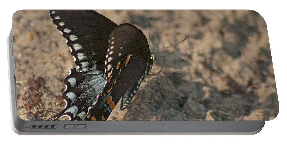 Adult Portable Battery Charger featuring the photograph Eastern Tiger Swallowtail 8526 3205 by Michael Peychich