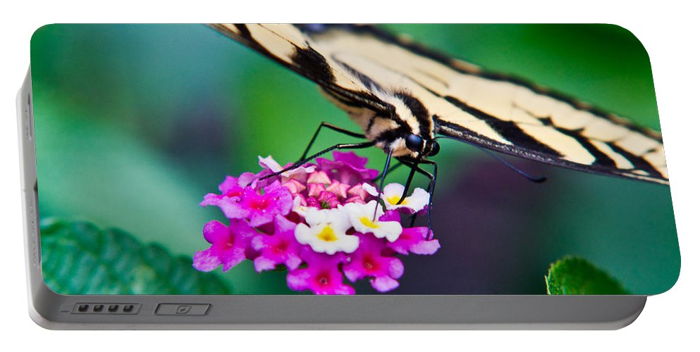 Eastern Portable Battery Charger featuring the photograph Eastern Tiger Swallowtail 9 by Douglas Barnett