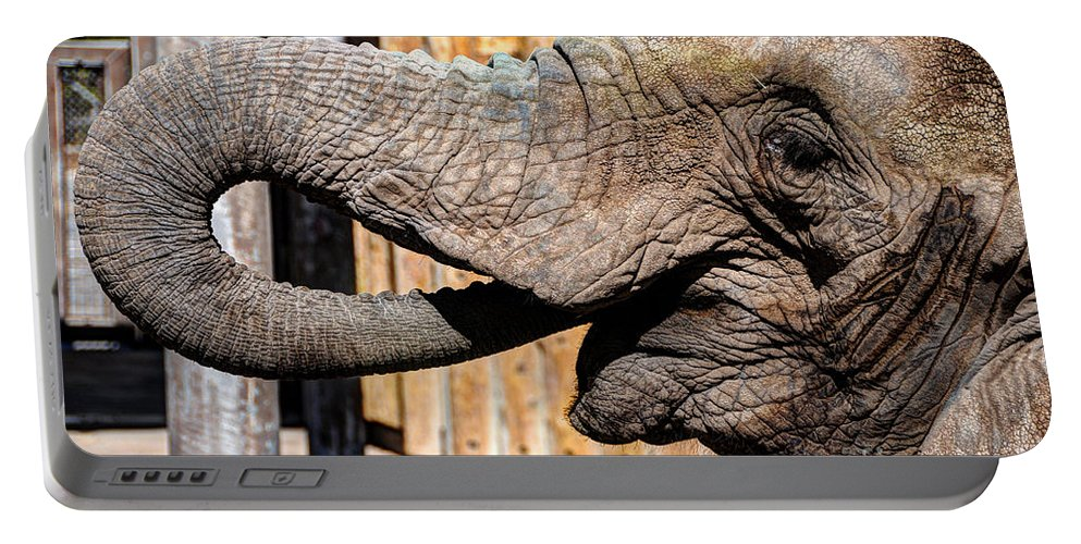 Elephant Portable Battery Charger featuring the photograph Elephant Feeding Time At The Zoo by Gary Whitton