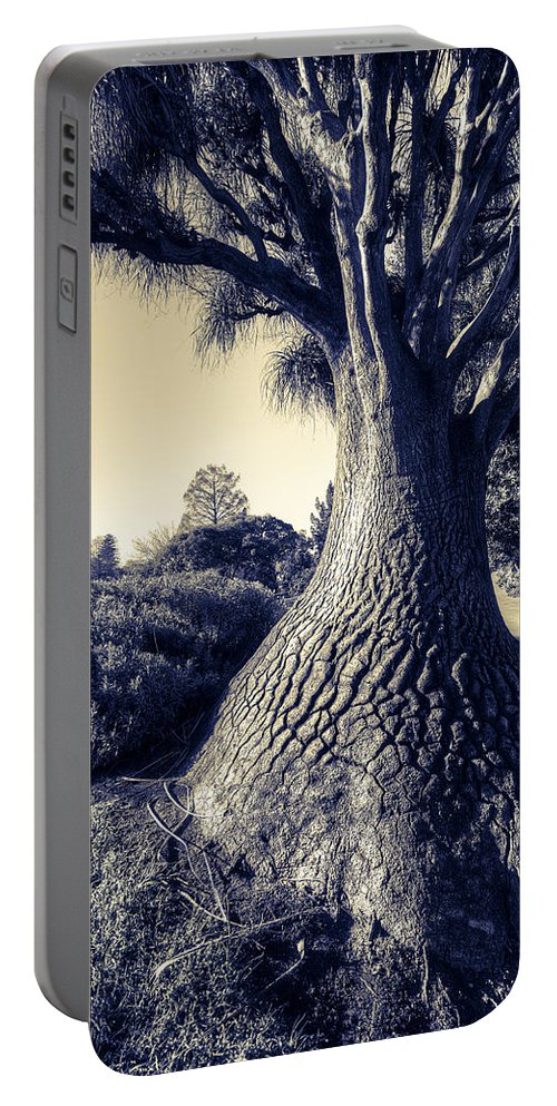 Elephantine Portable Battery Charger featuring the photograph Elephantine by Wayne Sherriff