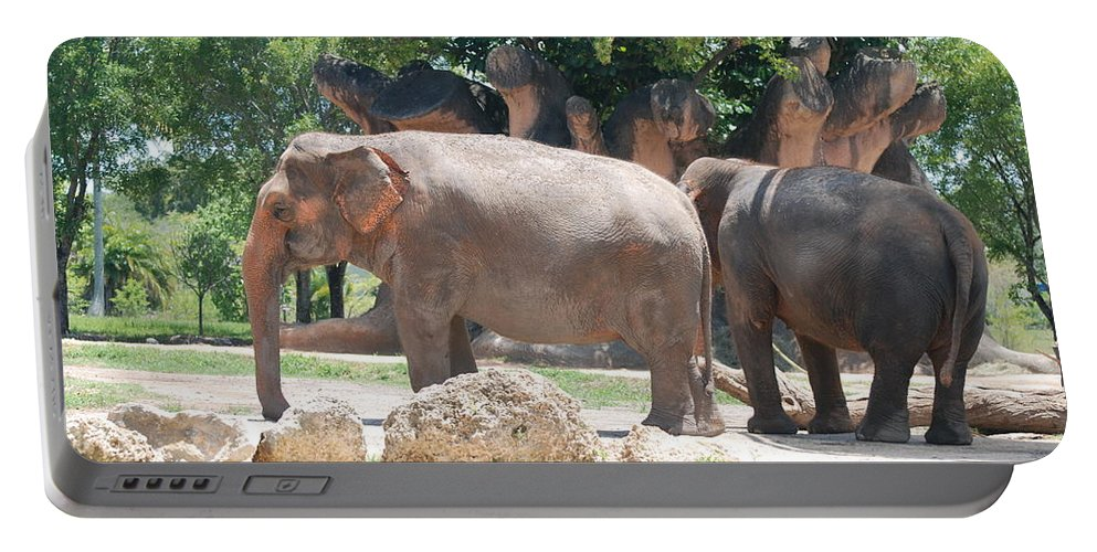 Animal Portable Battery Charger featuring the photograph Elephants by Rob Hans