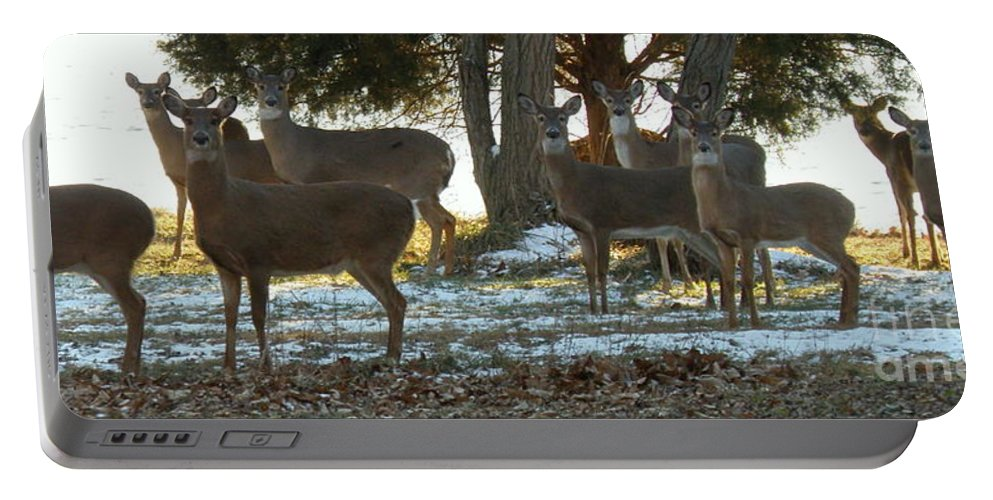 Deer Portable Battery Charger featuring the photograph Eleven Deer Standing by Lainie Wrightson