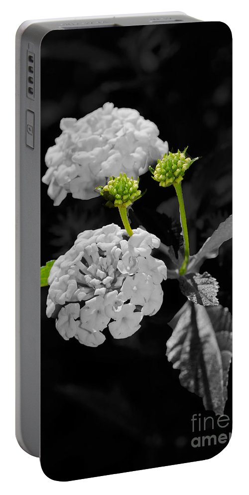 Lantana Portable Battery Charger featuring the photograph Emerging by Betty LaRue